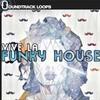 Vive La Funky House Wav Loops Sample Pack